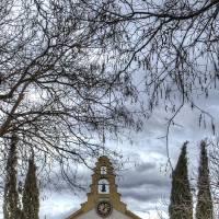 Arturo Pèrez-Reverte: The Seville Communion .