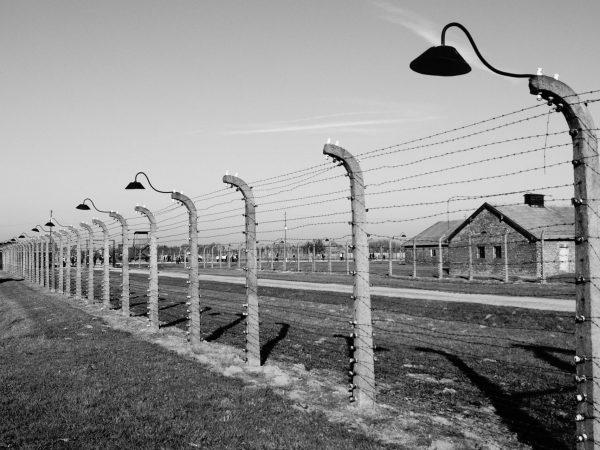 10 Best Holocaust Books 2021