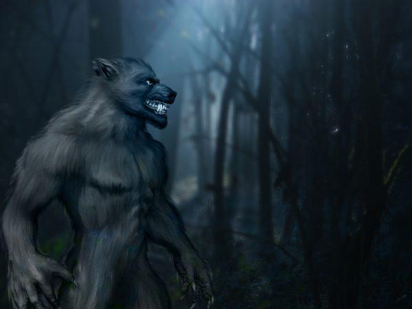 10 Best Werewolf Books 2021