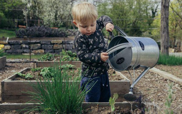 10 Best Garden Magazines 2021