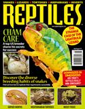 reptiles-magazine